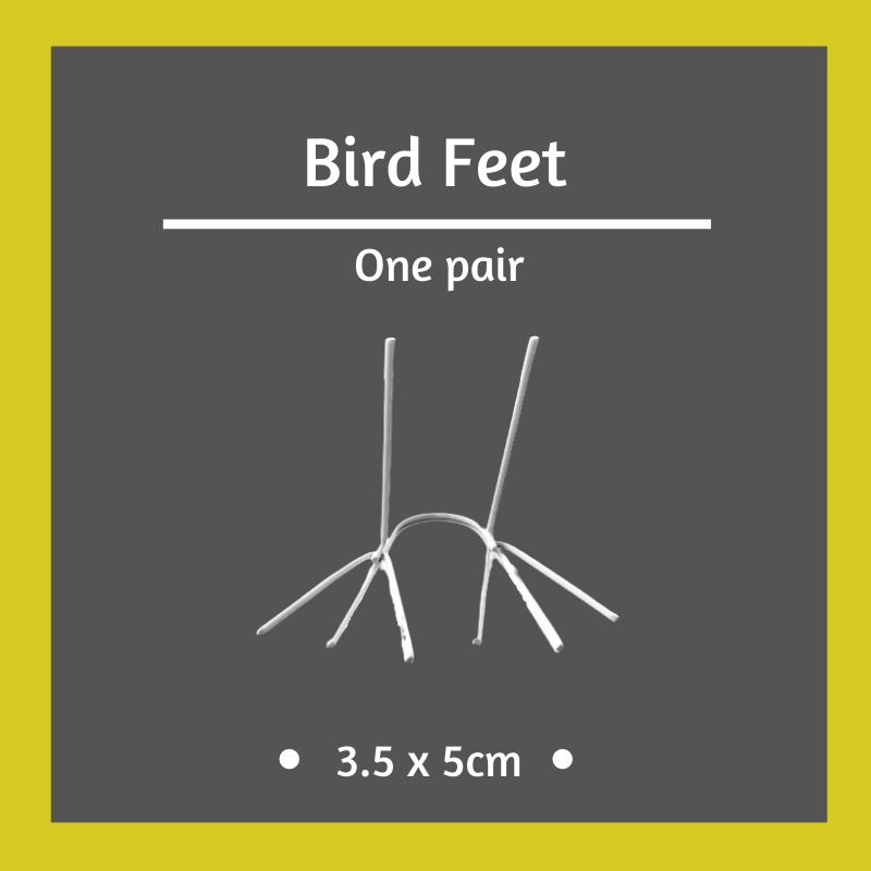 1 x Pair of Bird Feet - 3.5 x 5cm