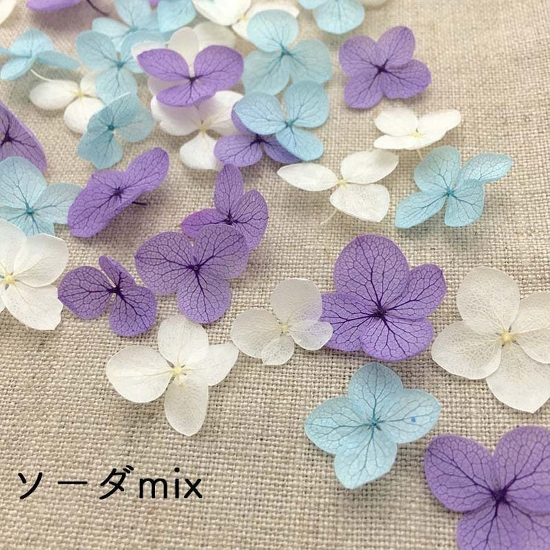 Preserved Hydrangea Flower Petals - Mixed Blue, Purple and White