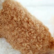 Hamanaka Curly Real Felt Wool for Needle Felting - Dark Brown
