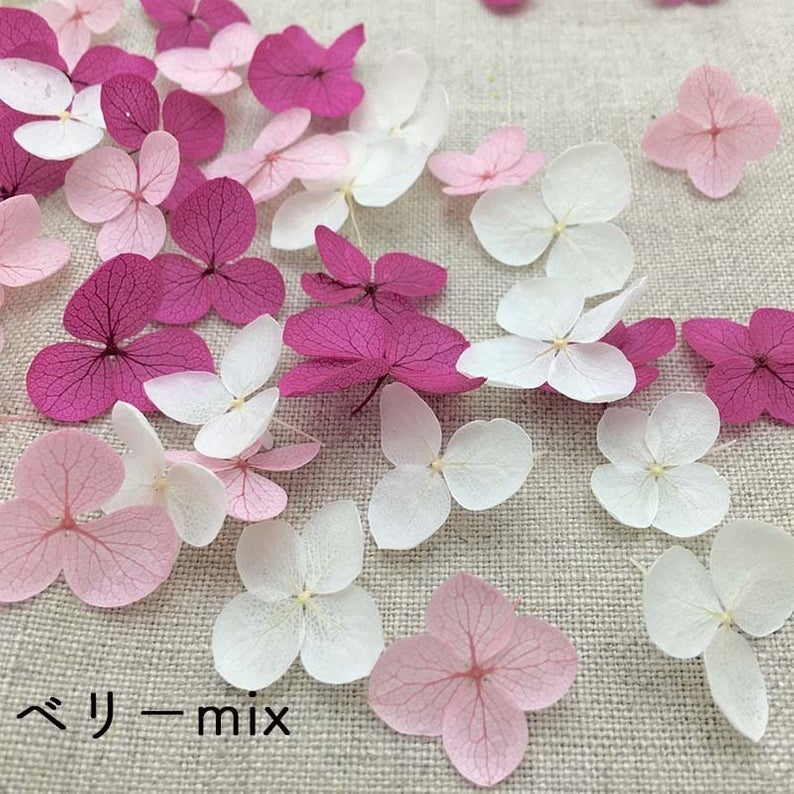 Preserved Hydrangea Flower Petals - Mixed Pink and White