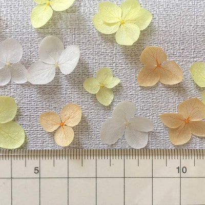 Preserved Hydrangea Flower Petals - Mixed Yellow and White