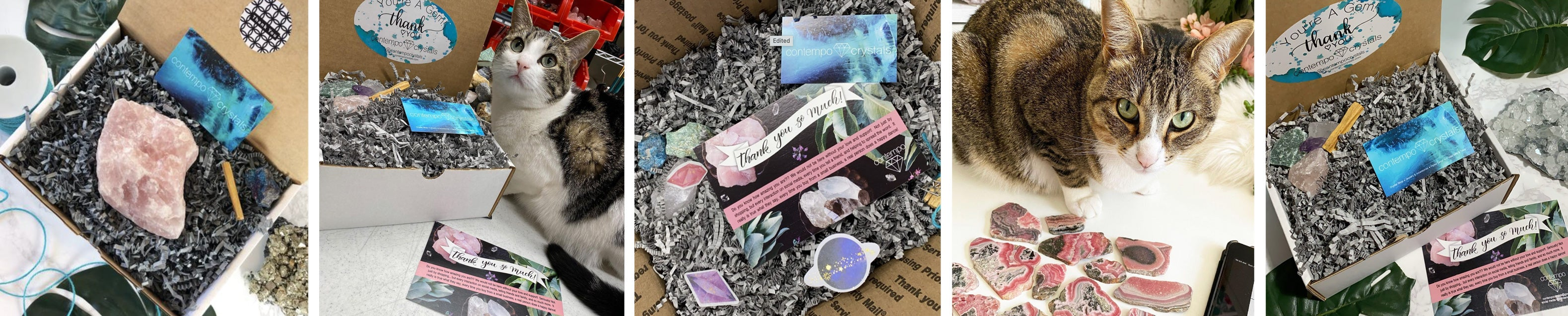 Contempo Crystals Online Crystal Mineral Rock Shop with Cute Cats and Packaging