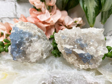 Load image into Gallery: Contempo Crystals - Blue Bingham Fluorite Clusters - Image 8