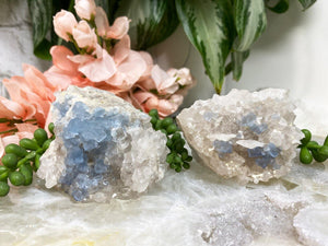 Contempo Crystals - Blue Bingham Fluorite Clusters - Image 3
