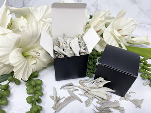 Contempo Crystals - Box of White Sage Leaves - Image 4