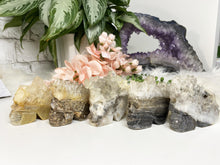 Load image into Gallery: Contempo Crystals - Large Quartz Geode Skulls - Image 9