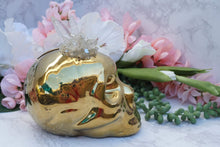 Load image into Gallery: Contempo Crystals - Quartz Skull Piggy Bank. Side view - Image 7