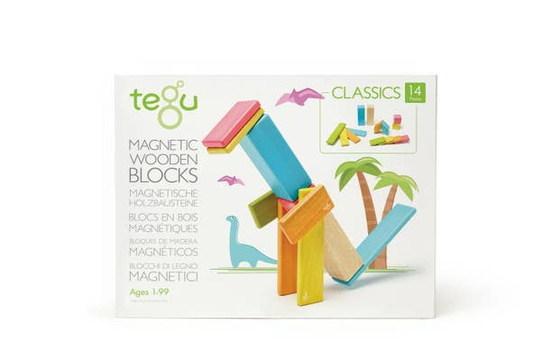 14 Piece Magnetic Wooden Block Set (from Tegu)