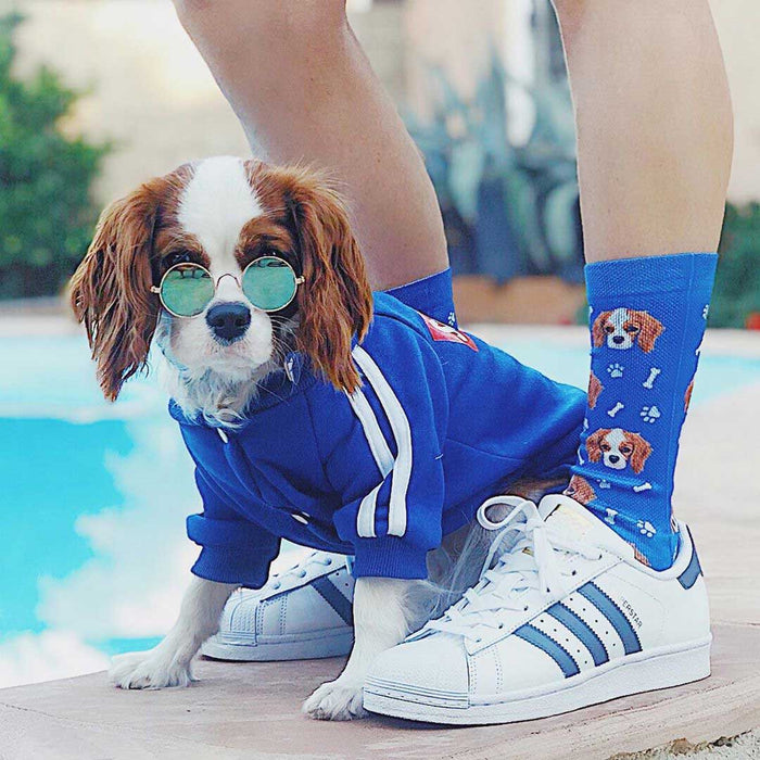Customized Pet Face Socks