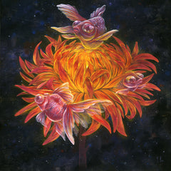 Artwork- Sol, Goldfish Dreamining, Limited Fine Art Print by Martin Hsu