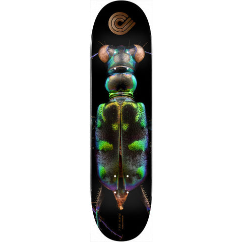 Powell: 8.25 BISS Tiger Beetle Deck