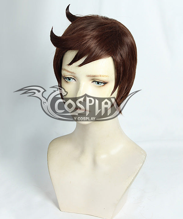Pokemon Pokémon Sword And Shield Male Trainer Brown Cosplay Wig