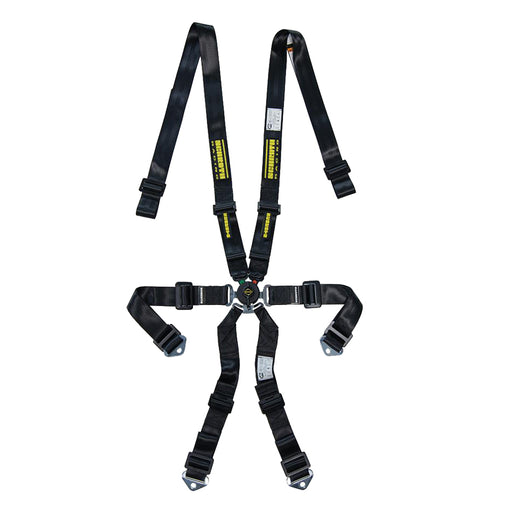 6pt Harness Profi 2x2 Pull-Down Lap