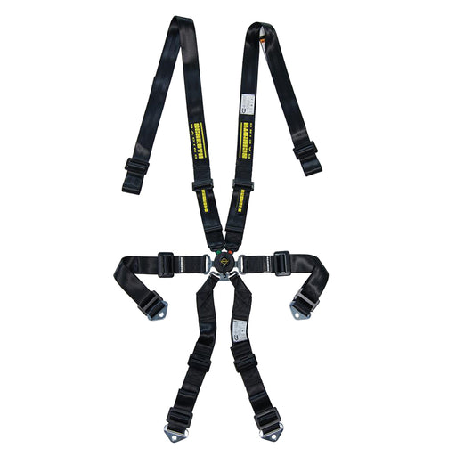 6pt Harness Profi 2x2 Pull-Up Lap