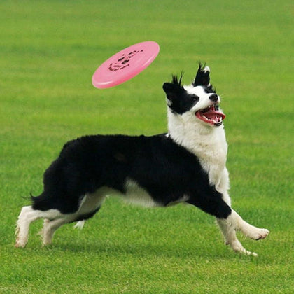 1pcs Plastic Flying Saucer Dog Toy Pet Game Flying Discs Resistant Chew Funny Puppy Training Toy Interactive Partner Pet Shop