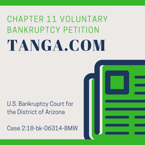 Voluntary Chapter 11 Bankruptcy Petition - Tanga.com