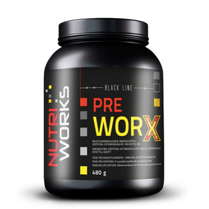 NUTRI WORKS PRE WORX BLUEBERRY 480g