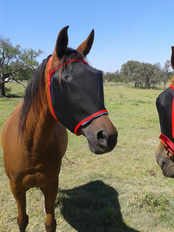 N'hay Gear - Fly Mask