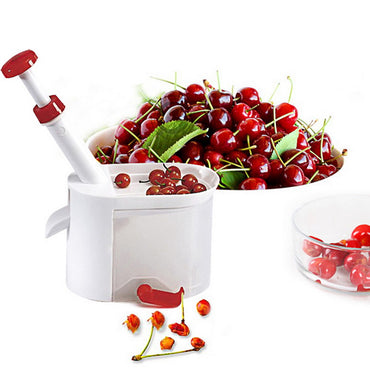 Cherry Seed Remover Tool