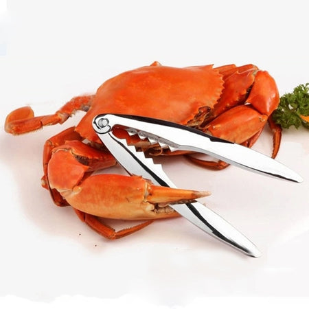Stainless Steel Lobster Clips