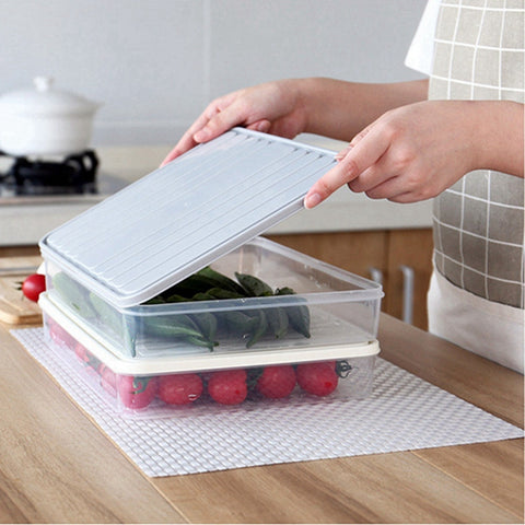 Food Preservation Storage Box
