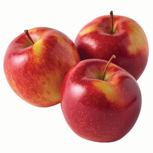 New Zealand Envy Apple - L (3pcs)