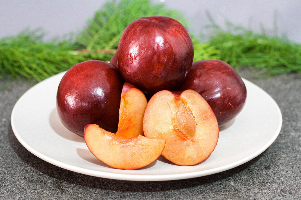 Australian Flavour Fall Plums (5 pcs)