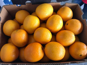Cara Cara Blood Orange (5pcs)