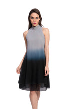 Load image into Gallery viewer, AGARDH Ombre Dress