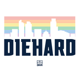 Rainbow Skyline Diehard shirt - DNVR Sports