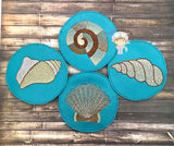 Shell Coaster Set