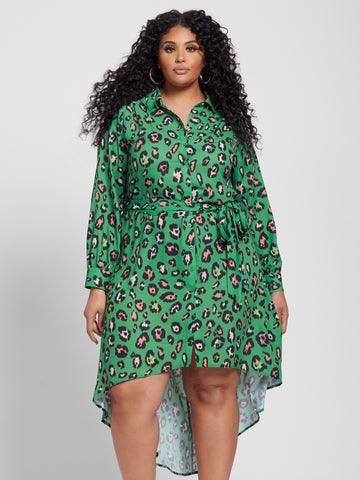 Raven Animal Print Shirt Dress in Green