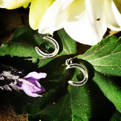 Horseshoe Earrings - Charmworks