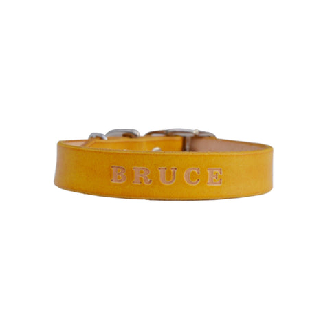 Sunshine yellow - Small dog leather collar