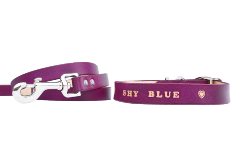 Deep violet matching set - leather dog collar and leash