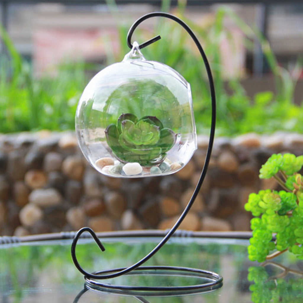 Teardrop Glass Terrarium - AmineMarket-Online shopping for the latest Products