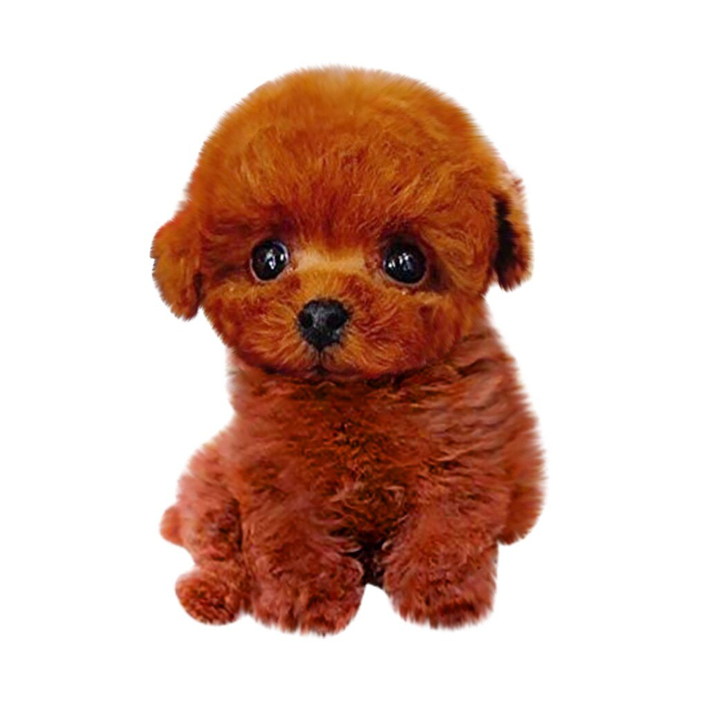🔥 Realistic Teddy Dog Lucky🔥 - AmineMarket-Online shopping for the latest Products