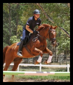 Nathan Harvey jumping with his horse