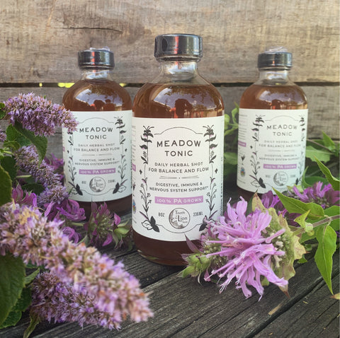 Meadow Tonic - digestive, immune & nervous system support