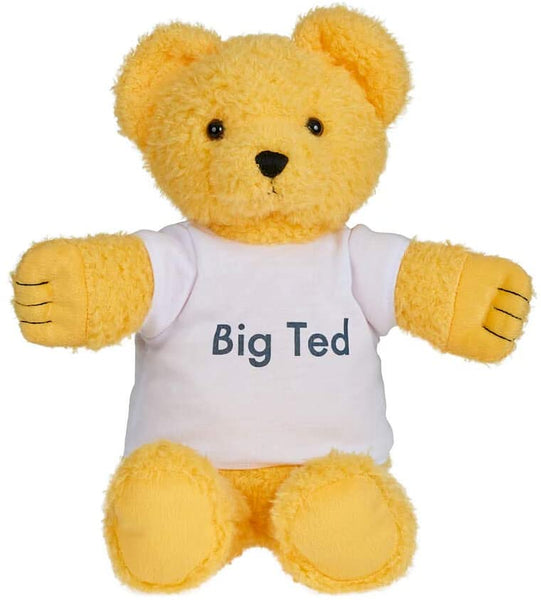 PLAYSCHOOL Big TED Plush Figures
