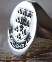 Custom Made Family Crest Ring - Gallagher Crest - Any Crest