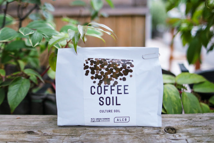 COFFEE SOIL Coffee Culture Soil