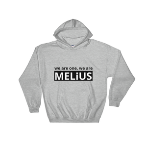 WE ARE ONE, WE ARE MELiUS | Unisex Hoodie