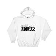 Load image into Gallery viewer, WE ARE ONE, WE ARE MELiUS | Unisex Hoodie