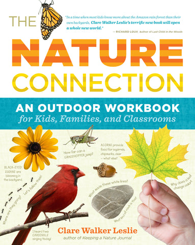 The Nature Connection Children's Book