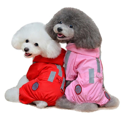 Dog Raincoats and Pet Supplies