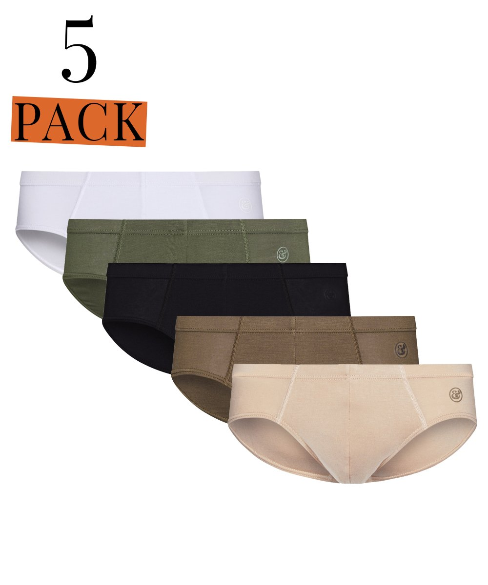 5 PACK Micro Modal Slip Brief