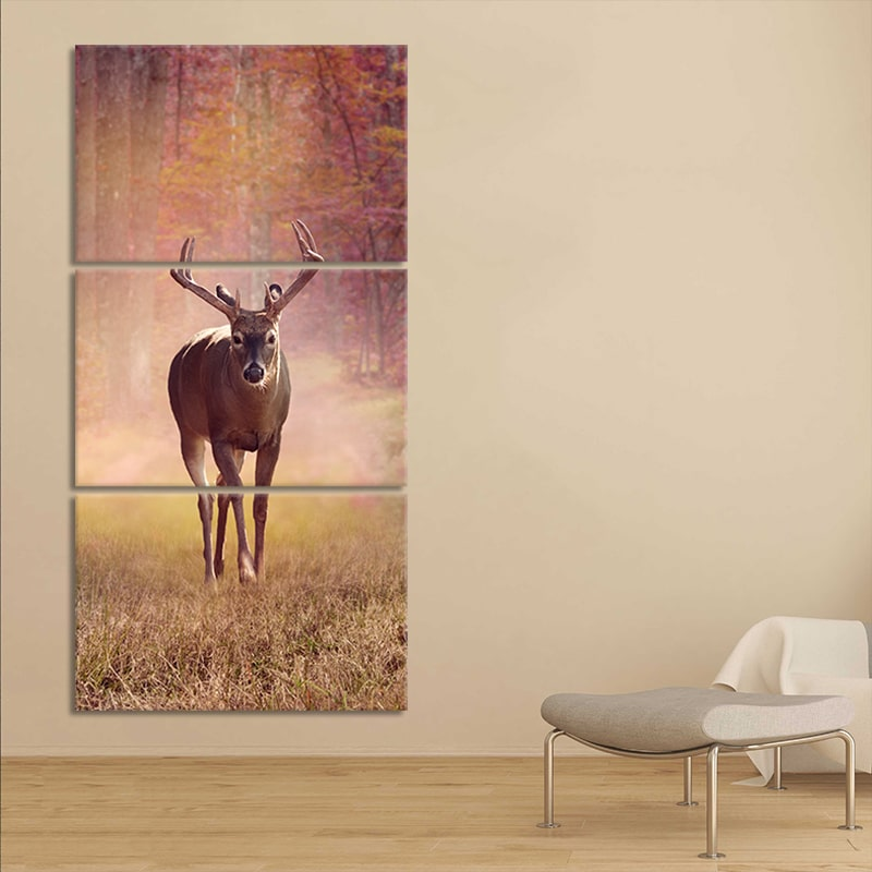 Autumn White Tail Deer 3 piece wall art