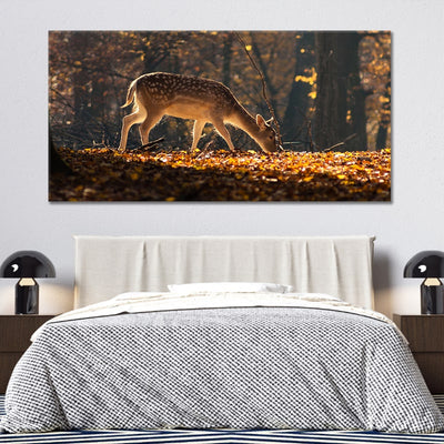 Baby White tail deer canvas prints cheap