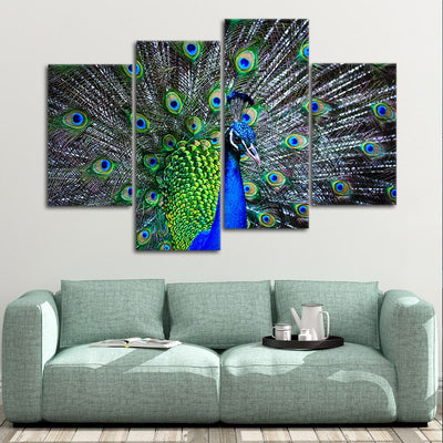 Peacock split Canvas Wall Art painting